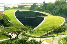 Žalieji stogai: žaliosios miestų salos bei erdvė kūrybingumui